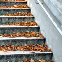 Rückenglück: Der Kinderwagen, der Treppen laufen kann